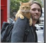 話題の本「奇跡の野良猫ボブ」とジェームズのお話!アンビリバボー
